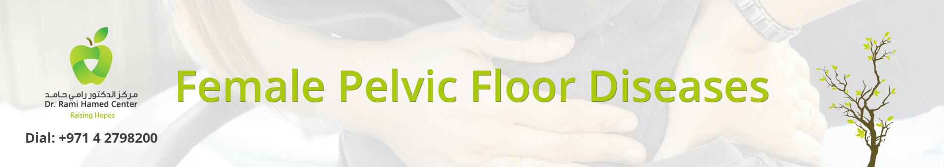 Female Pelvic Floor Diseases