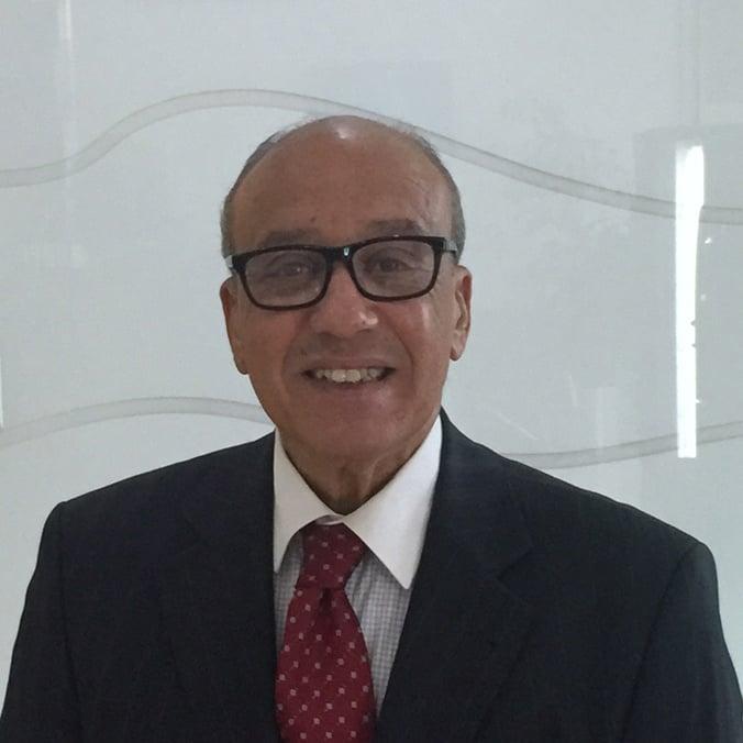 Prof Rajaie Mahran