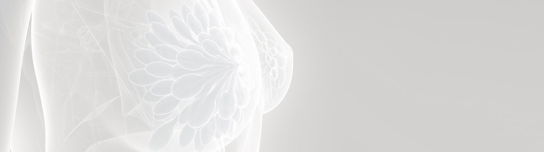 Breast Radiology Imaging