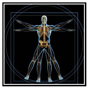 MUSCULOSKELETAL IMAGING