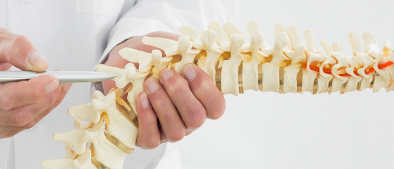 Orthopedic Gallery