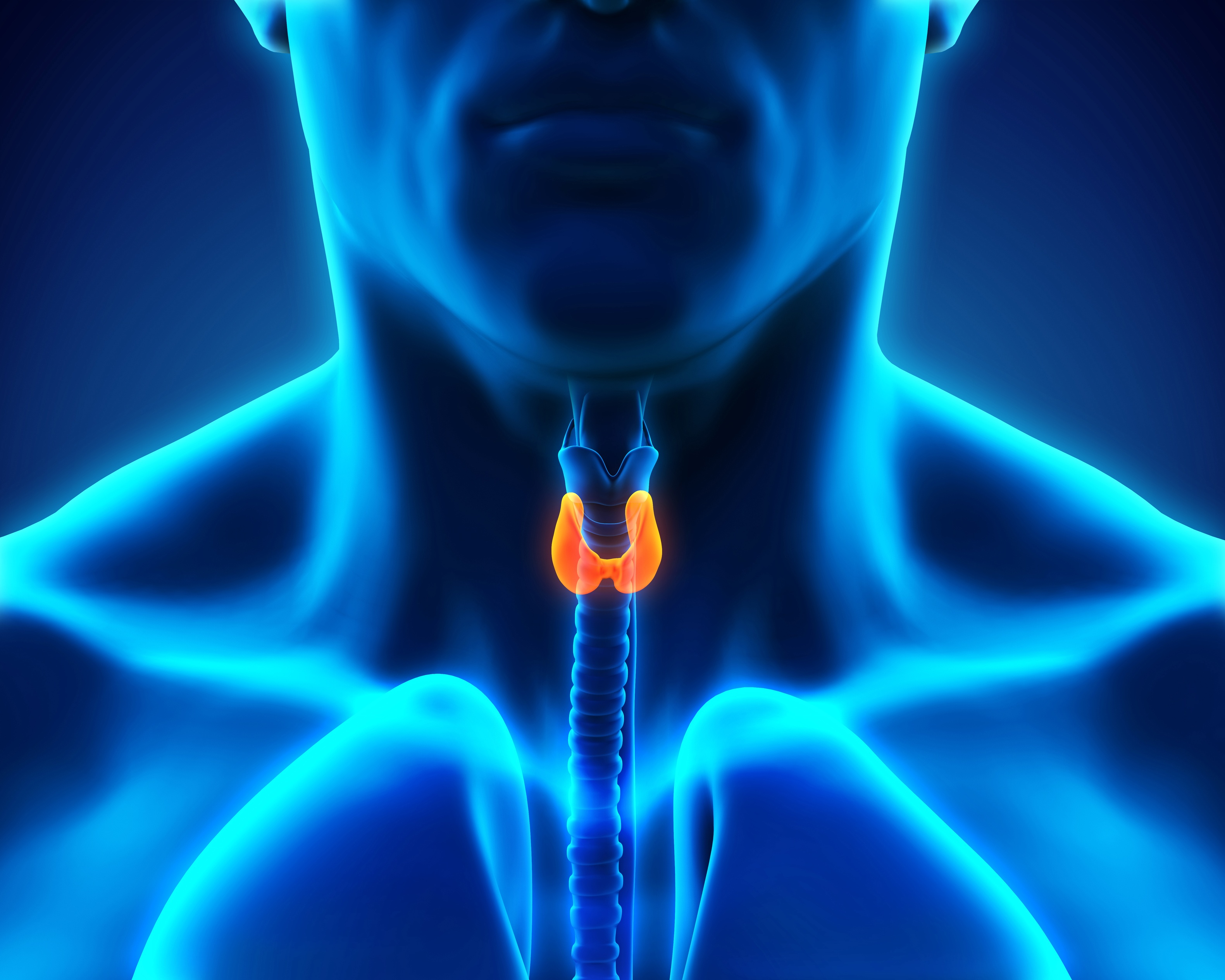 Hypothyroidism and Diet