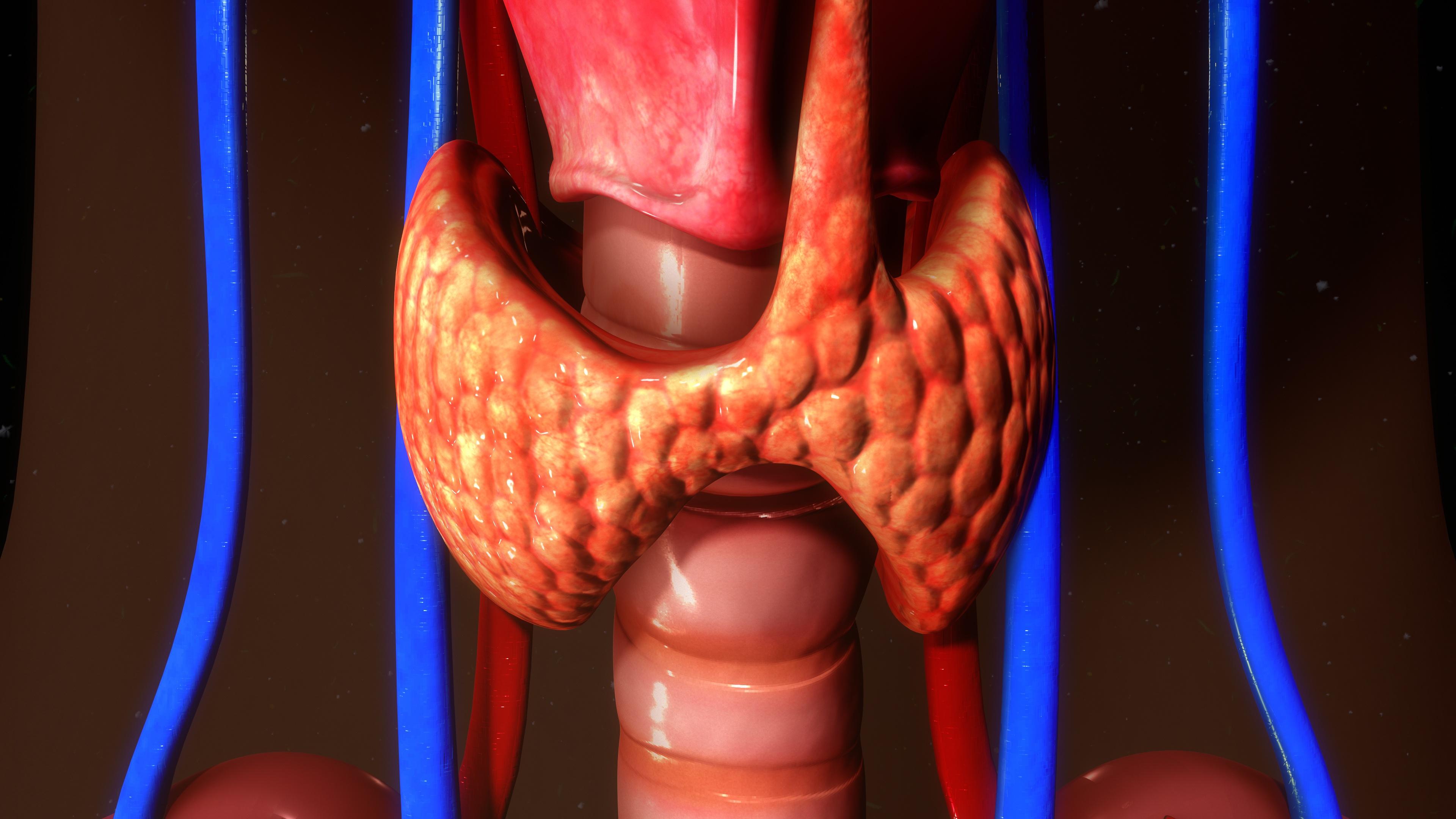 solitary thyroid nodule