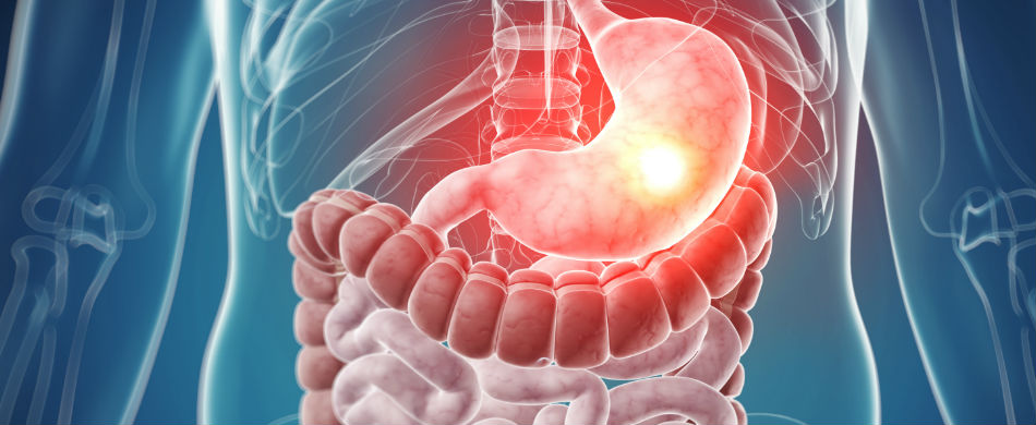 gastroenterology-resized.jpg