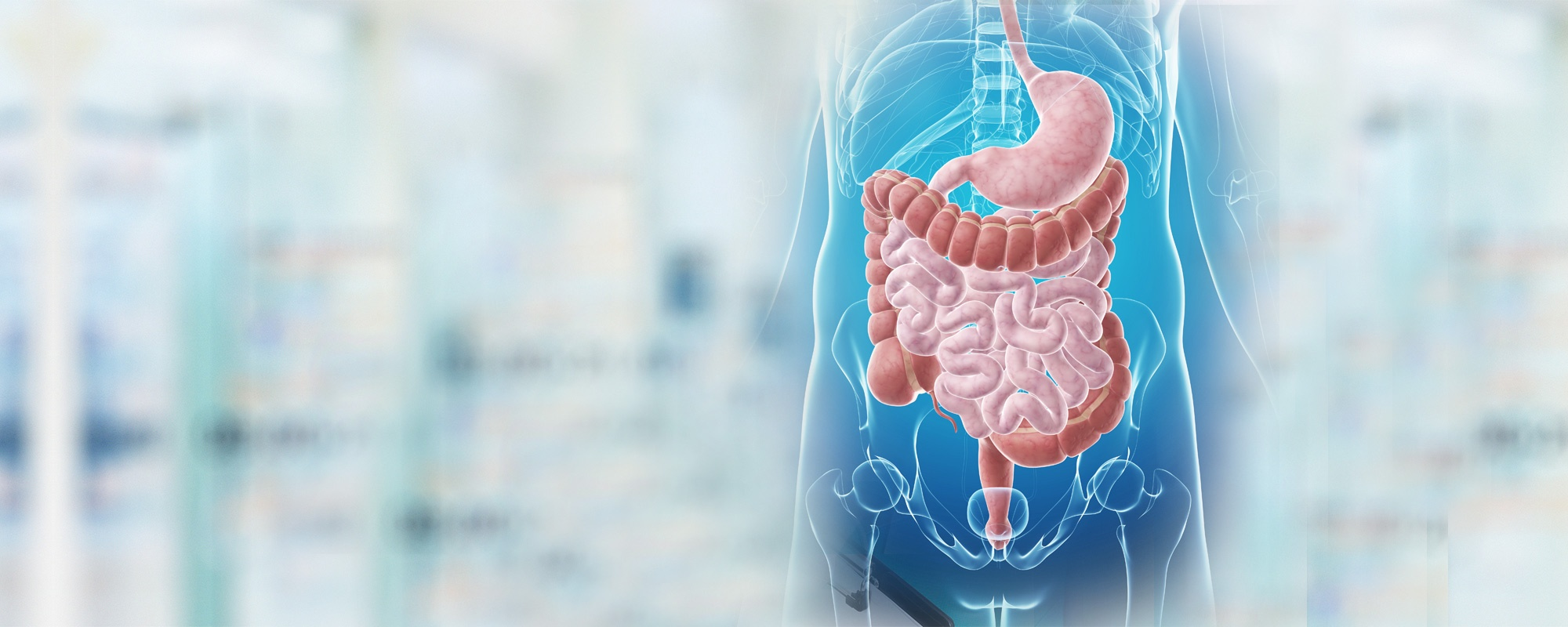 Gastroenterology Medicine Department